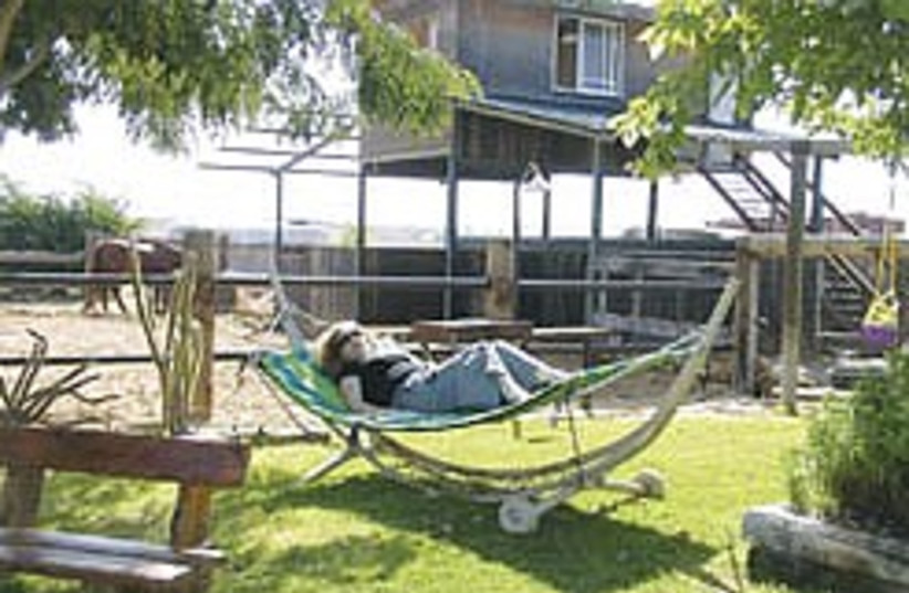 hammock in south 248.88 (photo credit: Ricky Ben-David)