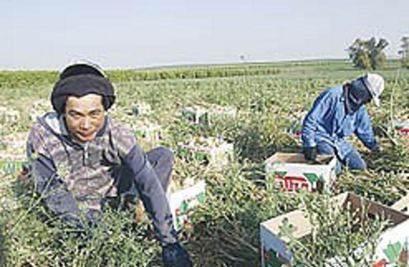 foreign worker 248.88 (photo credit: Ariel Jerozolimski )