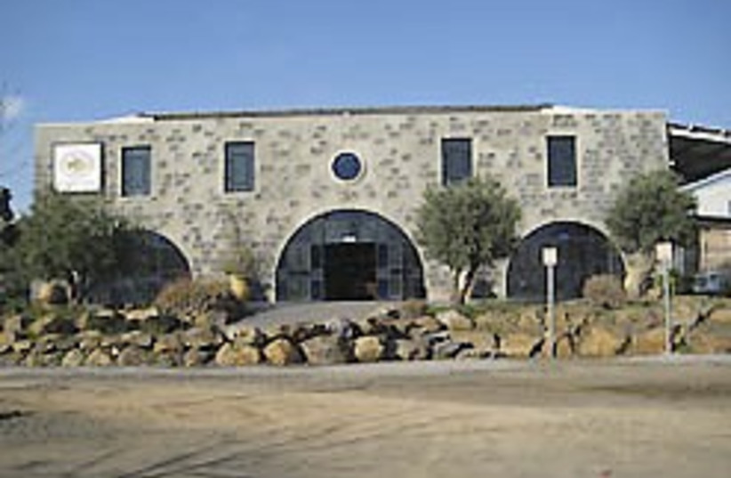 olive oil mill beit habad 248 (photo credit: Shira Teger)
