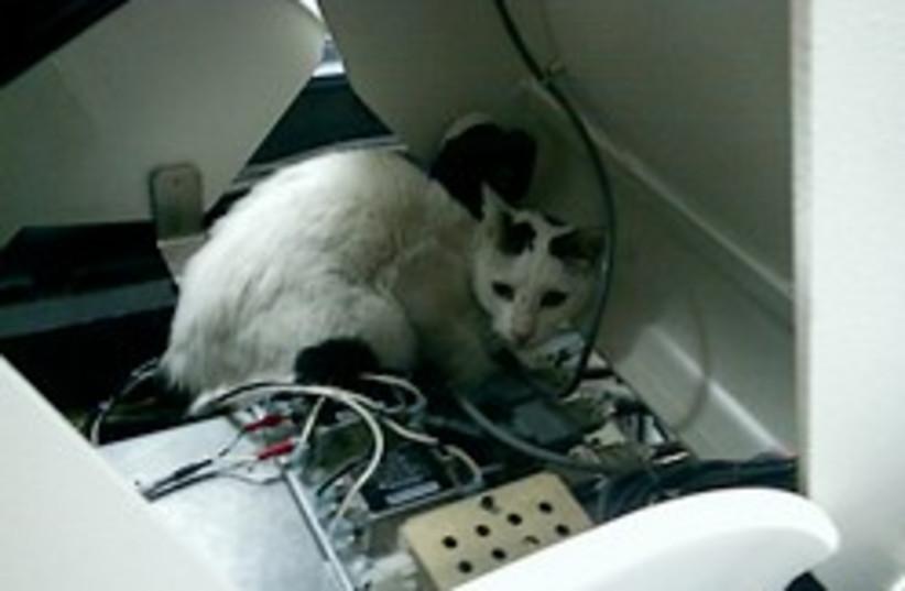 CAT scan anyone (photo credit: Courtesy Rambam Medical Center)