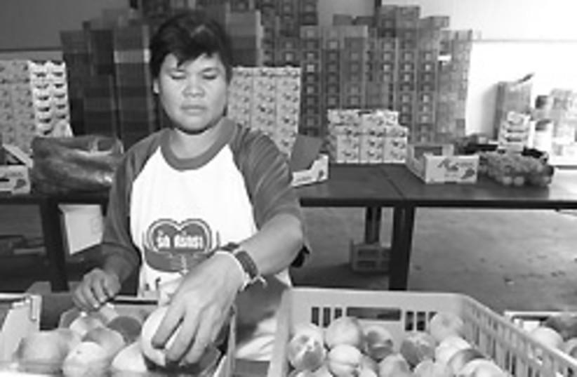 foreign worker 88 248 (photo credit: Ariel Jerozolimski)