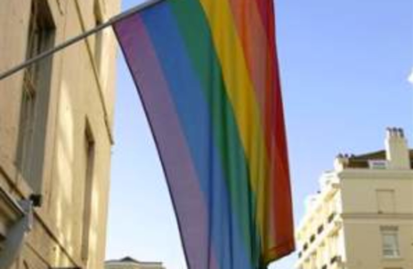 gay flag 298 ap (photo credit: AP)
