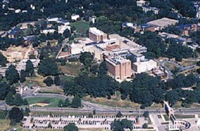 brandeis campus 248.88 (photo credit: Courtesy)