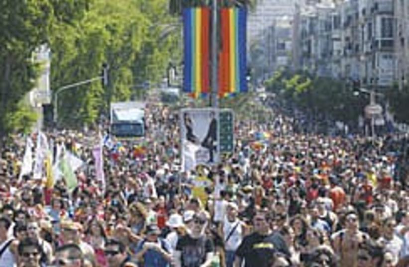 Gay pride colorful 248.88 (photo credit: Courtesy)