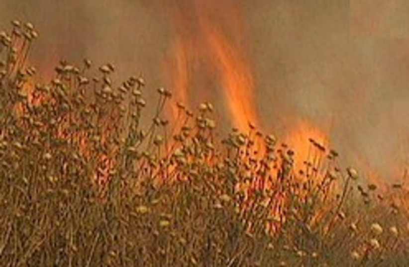 wild fire 248 88 (photo credit: channel 2)