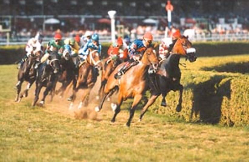 horse racing 88 298 (photo credit: )