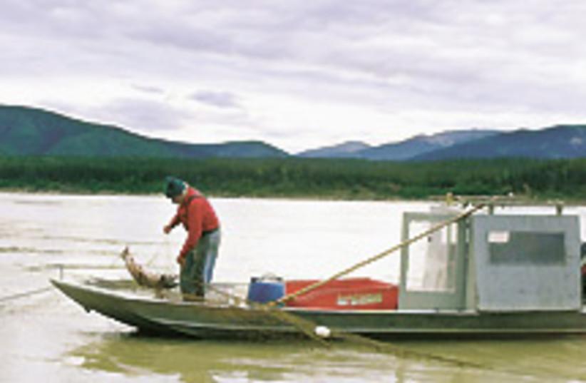 fishing 88 248 (photo credit: )