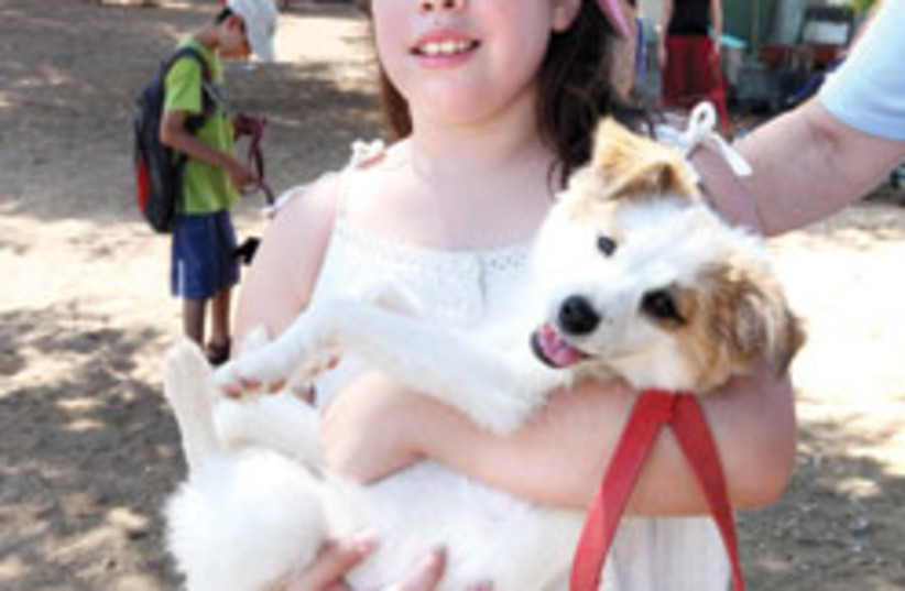 puppy with girl 88 248 (photo credit: )