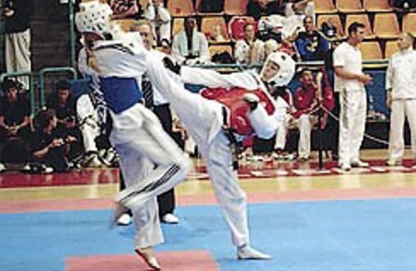 Taekwondo Gatterer 248.88 (photo credit: Tali Minsberg )