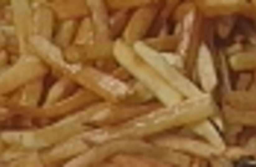 french fries 88 (photo credit: )