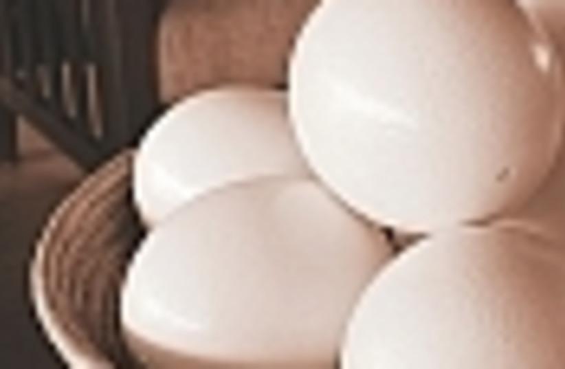 eggs 88 (photo credit: )
