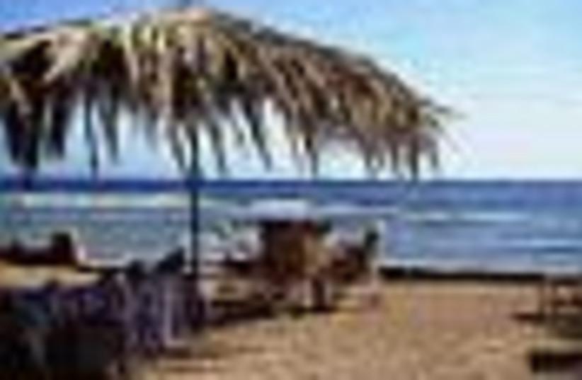 sinai beach 88 (photo credit: )