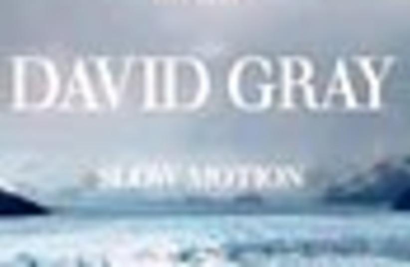 david gray disk 88 (photo credit: )