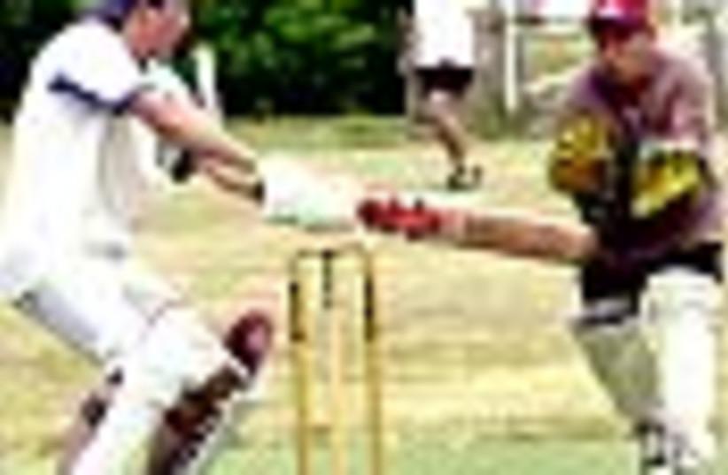 cricket 88 (photo credit: )