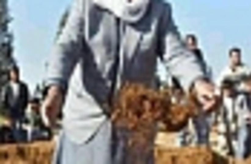 beduin 88 (photo credit: )