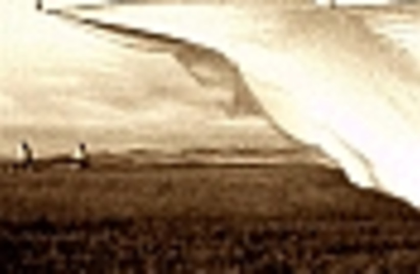 prairie wind 88 (photo credit: )