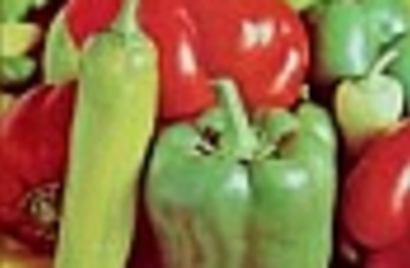 peppers 88 (photo credit: )