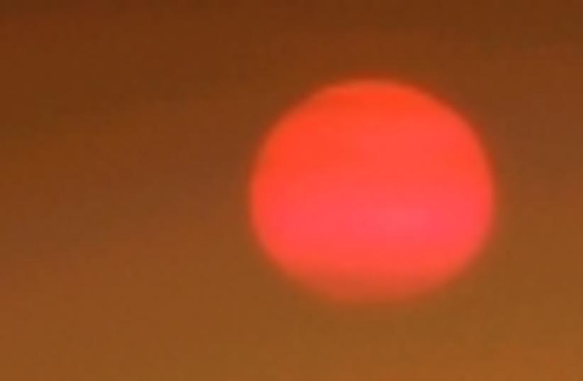 sun 88 (photo credit: )
