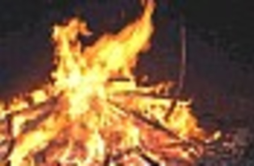 bonfire 88 (photo credit: )