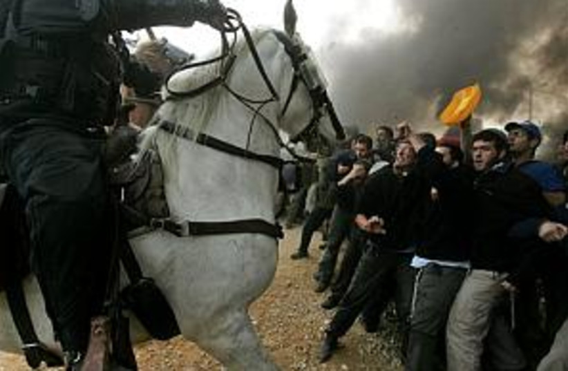 amona horse (photo credit: Associated Press)