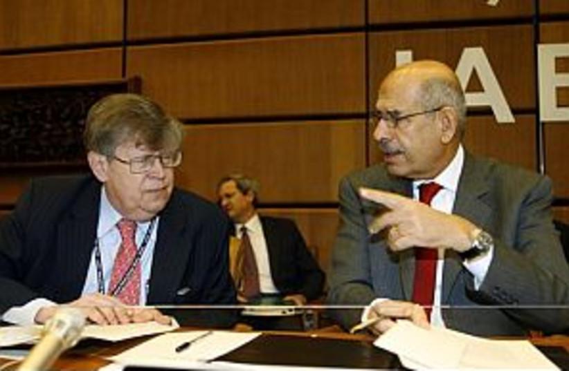 IAEA Director General  (photo credit: AP)