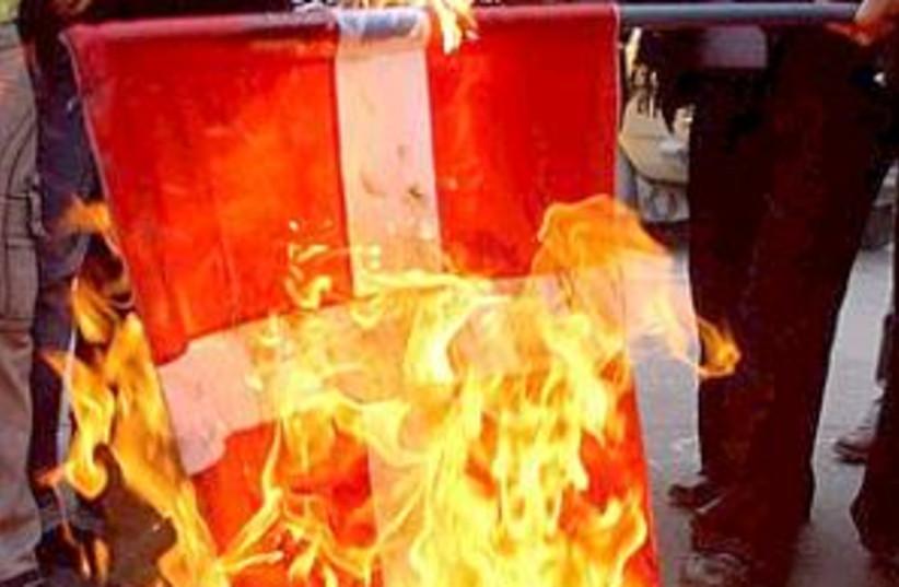 pa burn danish flag 298 (photo credit: AP)