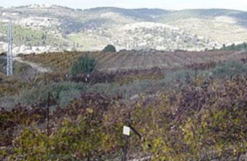 kibbutz tzova 248 88 (photo credit: Courtesy)