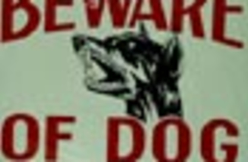 beware of dog sign 88 (photo credit: )