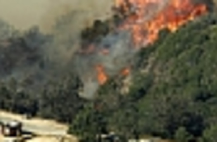 wildfire 88 (photo credit: )