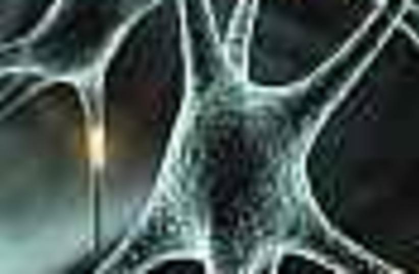 neuron 88 (photo credit: )
