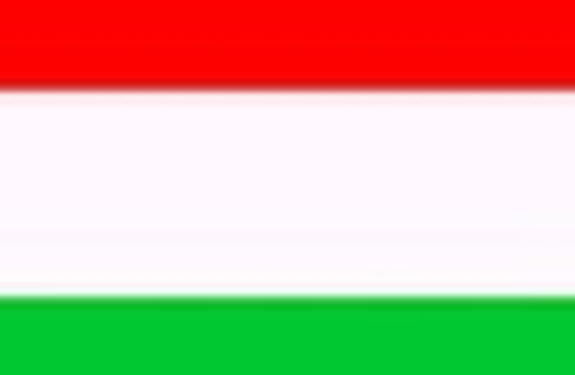hungarian flag 88 (photo credit: )
