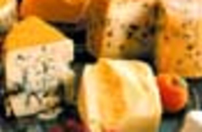 cheese 88 (photo credit: )