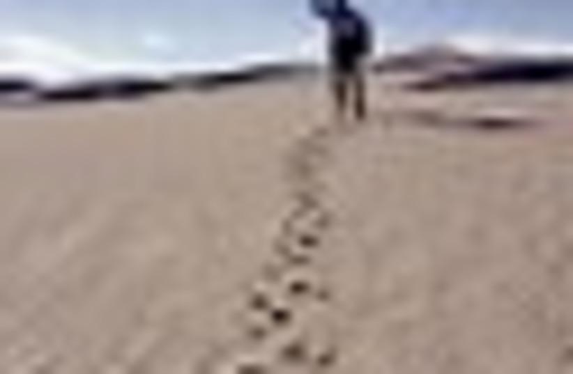 lost in desert 63 (photo credit: )