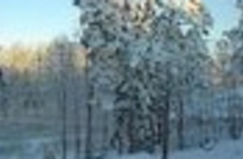 snow 88 (photo credit: )