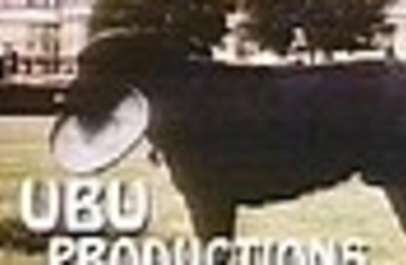 ubu 88 (photo credit: )