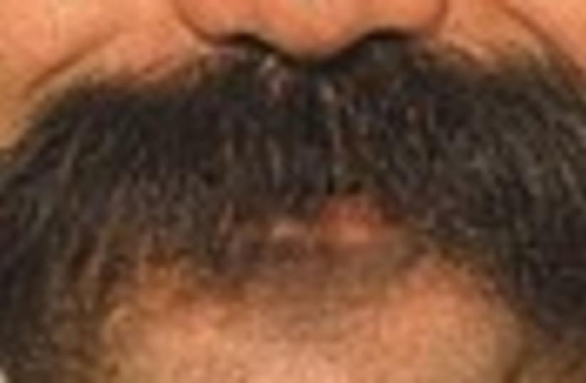 arab mustache 88 (photo credit: )