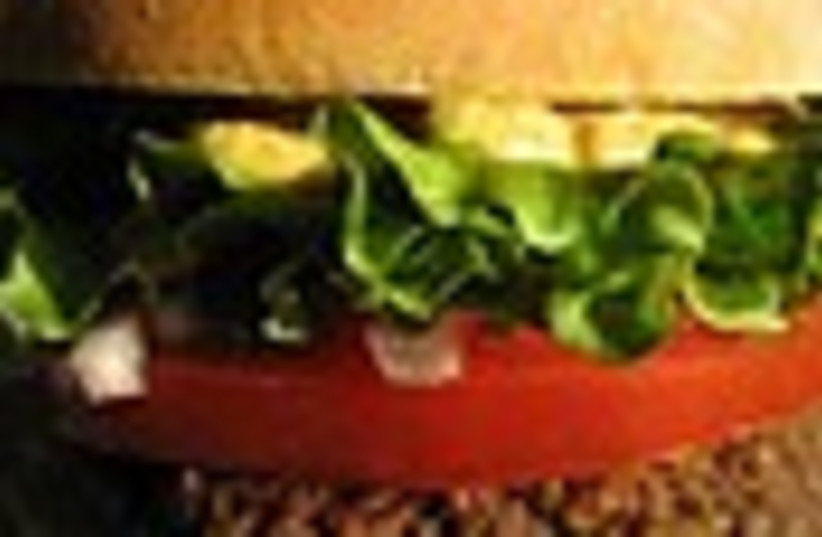 veggie burger 88 (photo credit: )
