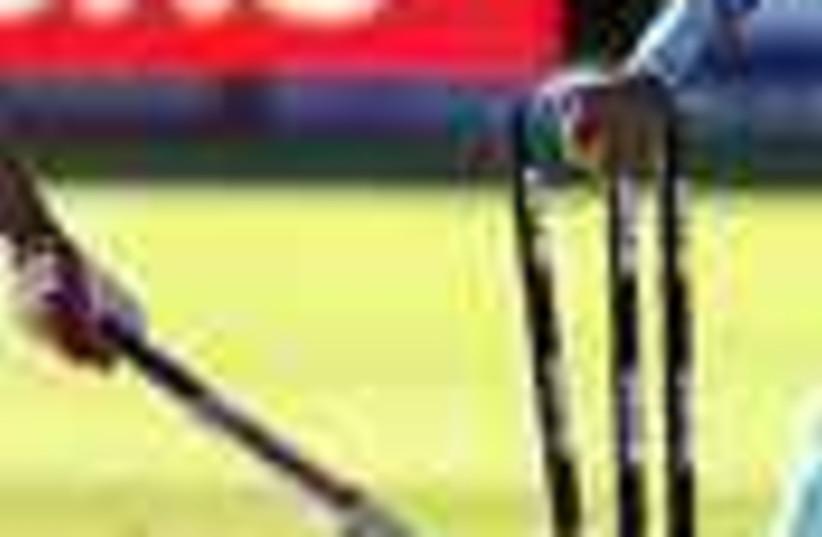 cricket (photo credit: )