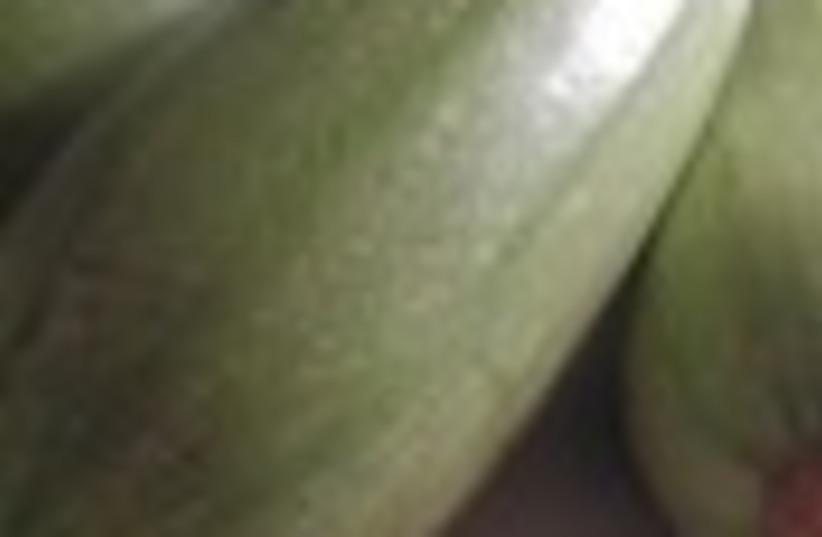 zucchini 88 (photo credit: )