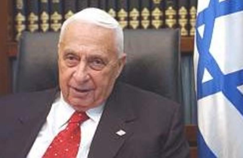 Ariel Sharon slumps 248.88 (photo credit: Ariel Jerozolimski)