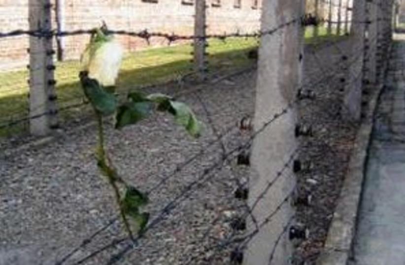 auschwitz barbed wire 29 (photo credit: Leslie Schachter)