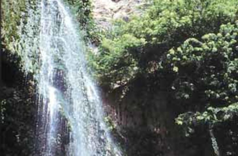ein gedi waterfall298.88 (photo credit: )