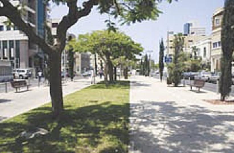 rothschild boulevard 248.88 (photo credit: Shmuel Bar-Am)