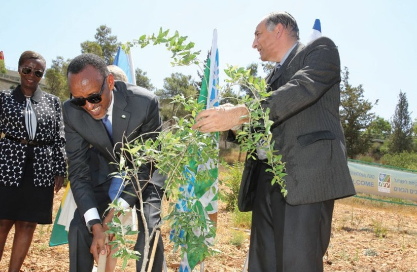 RWANDAN PRESIDENT Paul Kagame plants a tree at the Keren Kayemet Le'Israel –Jewish National Fund (KKL-JNF) Grove of Nations in Jerusalem (photo credit: YOSSI ZAMIR)
