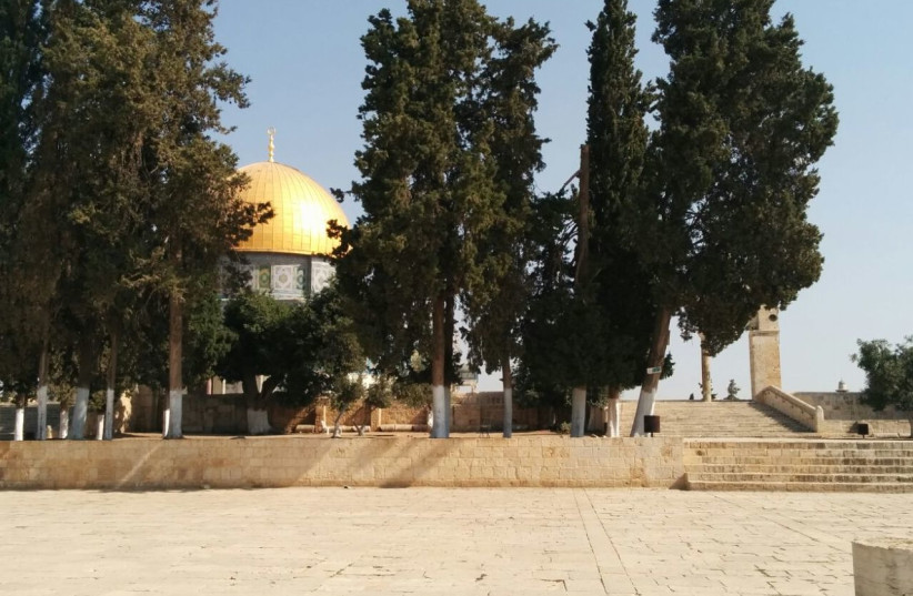 Temple Mount (photo credit: JOINT COUNCIL OF TEMPLE ORGANIZATIONS)