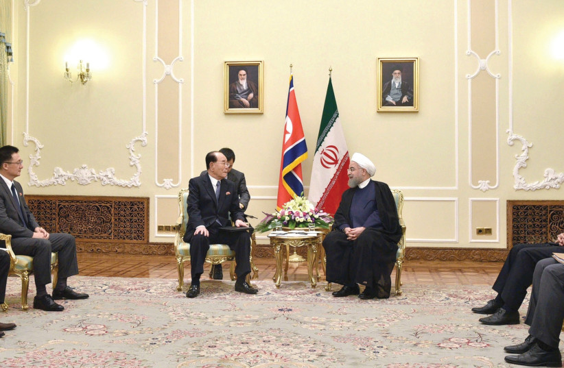 Iranian President Hassan Rouhani meets with Kim Yong-Nam, the president of North Korean's Presidium of the Supreme People's Assembly  (photo credit: KCNA/ REUTERS)