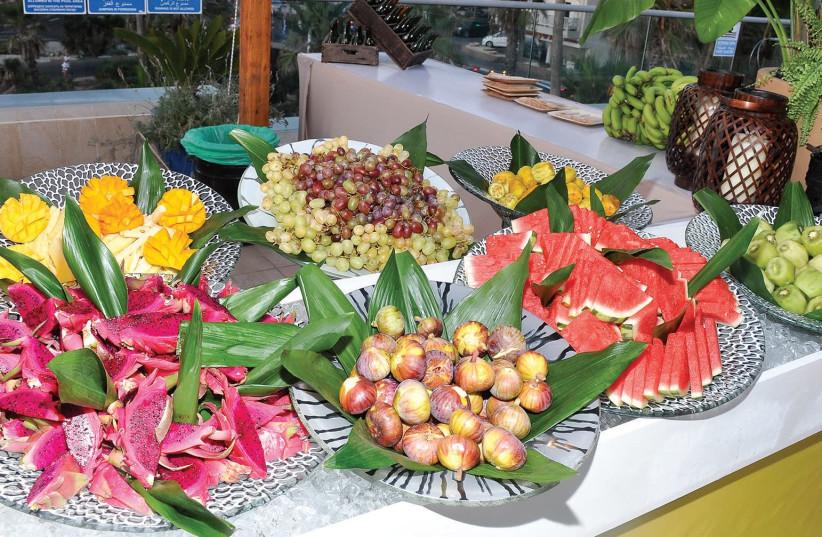 Cuba themed party at the Sheraton Tel Aviv. (photo credit: Courtesy)