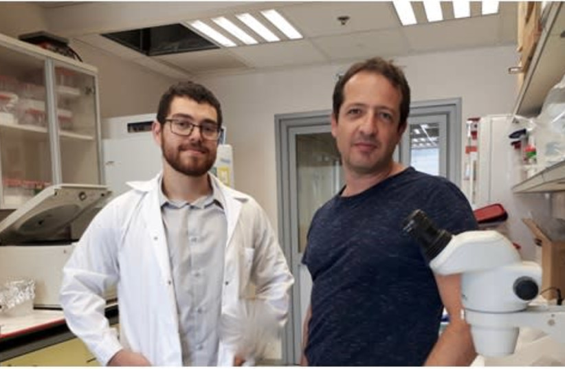 Dr. Yuval Tabach and Doron Stop of Hebrew University (photo credit: COURTESY HEBREW UNIVERSITY)