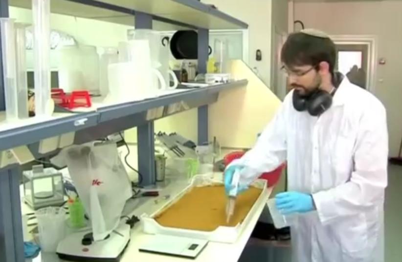 An Israeli scientist prepares food from fruit fly larvae (photo credit: screenshot)