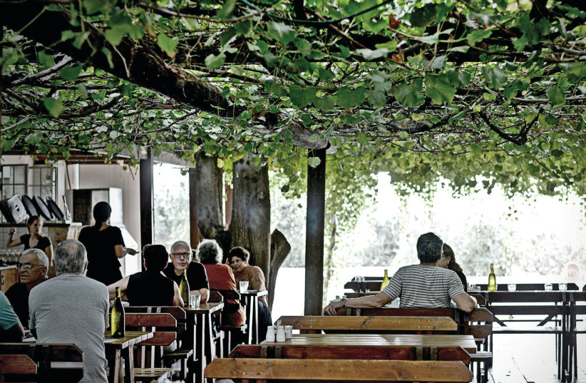 THE TISHBI Restaurant where 'Each man shall sit under his  g tree and vine' (photo credit: RAN BIRAN)
